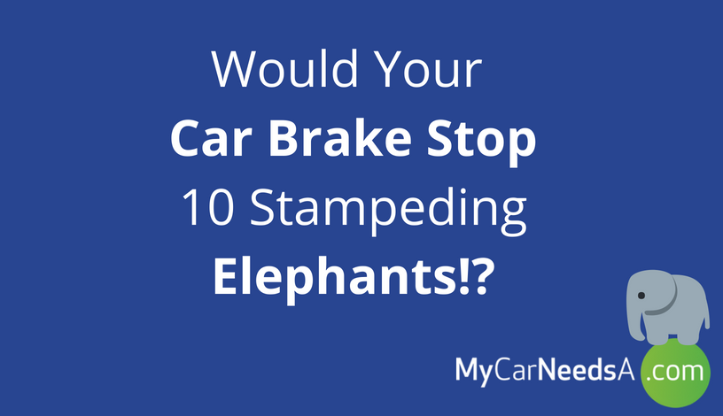 Would Your Car Brake Stop 10 Stampeding Elephants!?